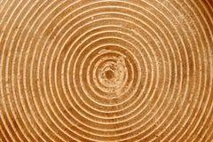 Structure en bois Photo stock
