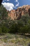 Structure et arbres Zion National Park de roche photo stock