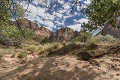 Structure et arbres Zion National Park de roche photo libre de droits
