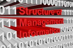Structure of Management Information Immagine Stock
