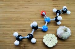 Structure moléculaire d'Allicin Photo libre de droits