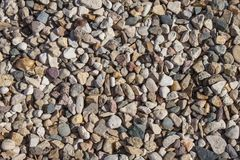 Structure from a motley sea pebble. Stock Photos