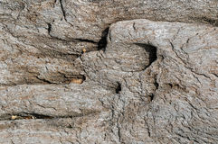 Structure of natural stone royalty free stock photo