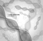 Structure noire et blanche d'ADN de fond illustration libre de droits