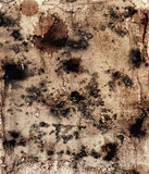 Structure of an old paper with mould. Stains Royalty Free Stock Images
