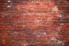Structure of an old red brick wall Royalty Free Stock Photos