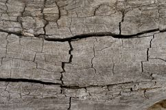 Structure of an old wooden surface Royalty Free Stock Image