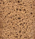 Structure of rye bread.  Stock Images