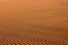 Structure of sand dunes Stock Photography