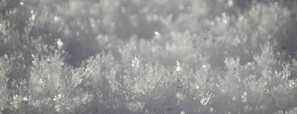 Structure of snow surface. South Bohemia, Czech republic Royalty Free Stock Photography