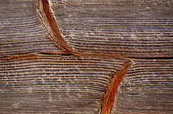 Structure of spruce board Royalty Free Stock Image