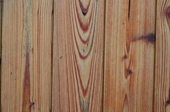 Structure varnished wood , southern Bohemia Stock Photo