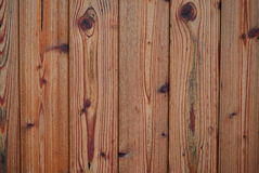 Structure varnished wood , southern Bohemia Royalty Free Stock Photography