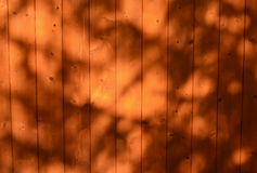 Structure varnished wood , southern Bohemia Stock Photos