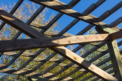 Structure of wood for climbing plants Royalty Free Stock Photo
