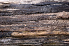 Structure - wood Stock Photography
