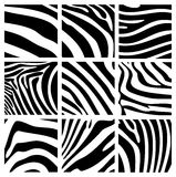Structure of a zebra Royalty Free Stock Photography