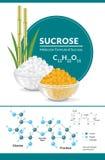 Structureel chemisch formule en model van sucrose Witte en bruine suikerkubussen in kommen Stock Foto