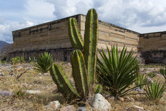 Structures dans Mitla, Oaxaca Image libre de droits