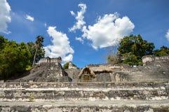 Structures du nord d'Acropole sur la plaza grande dans Tikal images stock