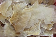 Structures of dried fish, a delicacy in Hongkong, China Stock Photo