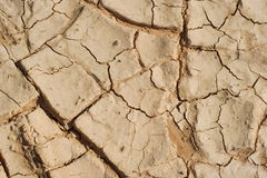 Structures of a soil Stock Photography