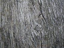 Structuur: doorstaan hout Stock Afbeeldingen