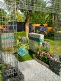 Structuur in groen park Royalty-vrije Stock Fotografie