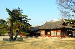 Structuur in Paleis Changgyeonggung Stock Afbeeldingen