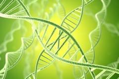 Structuur van DNA van de Concetp de digitale illustratie het 3d teruggeven Stock Foto