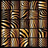 Structuur van een zebra Royalty-vrije Stock Afbeelding