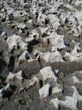 Structuur van kalksteenkust, Doolin, Ierland, de EU. Stock Afbeelding
