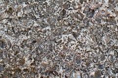 Structuur van kust overzeese steen stock afbeeldingen