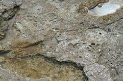 Structuur van kust overzeese steen royalty-vrije stock foto's