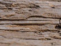 structuur van oud bros hout royalty-vrije stock fotografie