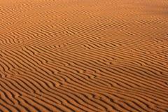Structuur van zandduinen Stock Fotografie
