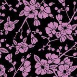 Structuursacura bloemen, ornament, stock illustratie
