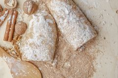 Strudel της Apple με τα καρύδια, τις σταφίδες, την κανέλα και την κονιοποιημένη ζάχαρη Στοκ Φωτογραφίες
