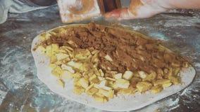 Strudel alle mele bollente del cuoco unico della donna Le mani femminili spruzzano la pasta con cannella stock footage