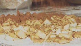 Strudel alle mele bollente del cuoco unico della donna Le mani femminili spruzzano la pasta con cannella archivi video