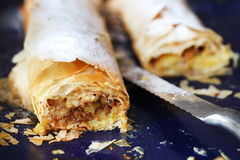 Strudel filled with rhubarb and apple, on a baking Stock Images