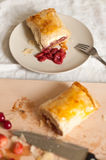 Strudel with Fruits and Cottage Cheese Royalty Free Stock Image