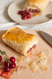 Strudel with Fruits and Cottage Cheese Royalty Free Stock Photo