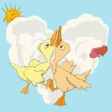 Strudel mit zwei Enten im Liebestanz Stockfotos
