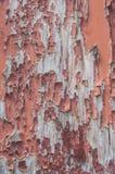 strugać farbę na drewnianej tło teksturze Zdjęcia Stock