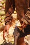 strugać kokosowe wyspiarki Obrazy Stock