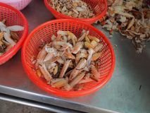Strugający skorupę gotował się kraba mężczyzna w fabryce Obrazy Royalty Free
