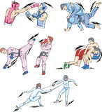 Struggle and Fighting Sports. Boxing, Judo, Taekwondo, Fencing, Freestyle and Greco-Roman Wrestling. Set of color vector illustrations Stock Images