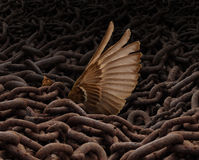 Struggle For Freedom. Concept and weighed down symbol as a load or group of rusty metal chains holding down a trapped bird with a wing reaching out for help Stock Photos