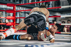 Struggle between two athletes of mixed martial arts on floor of  ring Royalty Free Stock Photos
